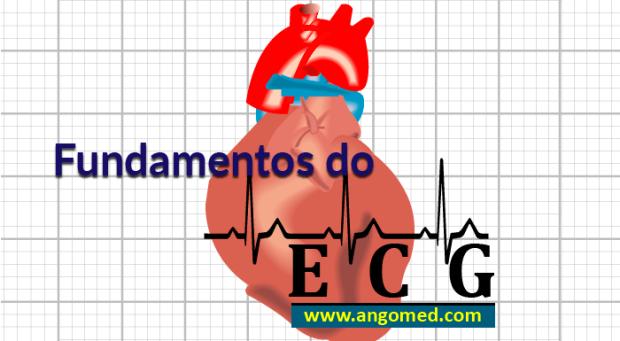 Fundamentos da Eletrocardiografia | Portal ANGOMED, coração, electrofisiologia